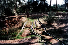Irrigation timimoun